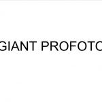 Giant Profoto